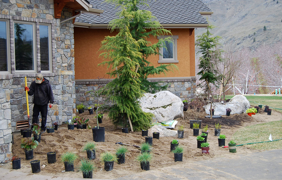 Every plant has a purpose. Evergreen or deciduous trees, perennials and grasses, or planting areas for annuals - all are expertly selected to create the flow and feel of your custom landscape. We design your plantings with texture, color, size and shape in mind and take great care to ensure that every plant will acclimatize and thrive by planting at the right time of year in properly amended, specially mixed soils.   Relationships cultivated over decades allow us to source exceptional and unique plant materials from the highest quality providers. Whether you want berries or butterflies, year-round color or easy-to-maintain gardens, we will compose a planting design that adapts to your budget and your personal preferences.